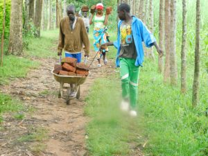 The Water Project:  Teamwork To Bring Materials To The Spring