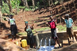 The Water Project:  Celebratingt The Spring
