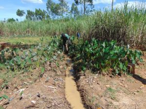 The Water Project:  Drainage Opening