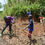 The Water Project: Mukhungula Community, Mulongo Spring -  Fencing