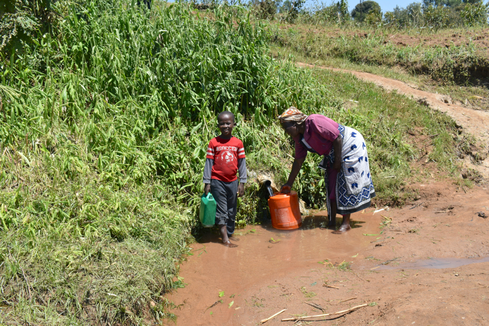 The Water Project : kenya21070-fetching-water-from-the-spring-3