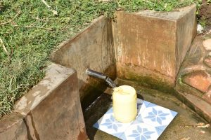 The Water Project:  A Year Later Clean Water Still Flowing