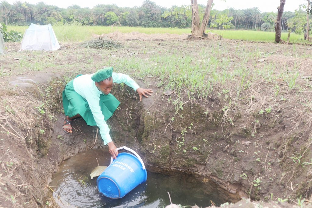The Water Project : sierraleone21521-student-collecting-water-1