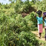 The Water Project: Maraba Community, Shisia Spring -  Women Carrying Grass To Plant At The Spring