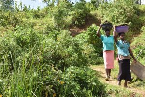 The Water Project:  Women Carrying Grass To Plant At The Spring