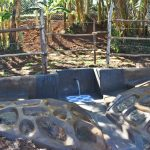 The Water Project: Mukhonje B Community, Peter Yakhama Spring -  Completed Peter Yakhama Spring