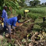 The Water Project: Kalenda A Community, Moro Spring -  Digging The Cutoff Drainage