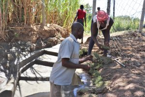 The Water Project:  Planting Grass Over The Protected Area