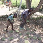 The Water Project: Luyeshe Community, Khausi Spring -  Grass Planting