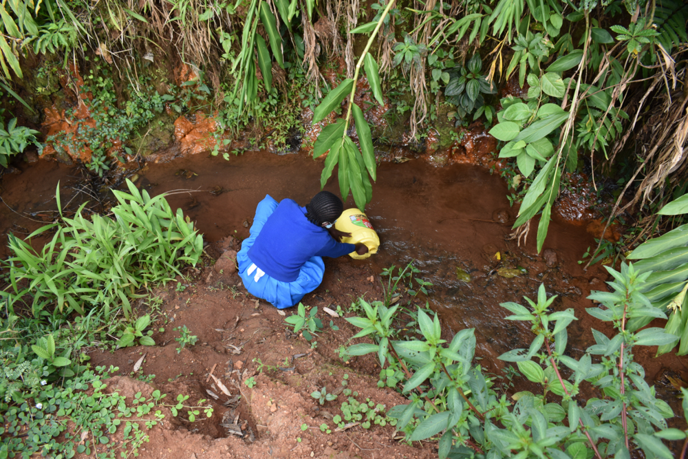 The Water Project : kenya21240-fetching-water-at-the-stream-7