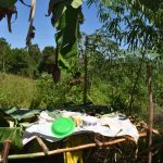The Water Project: Itieng'ere Primary School -  Dishrack