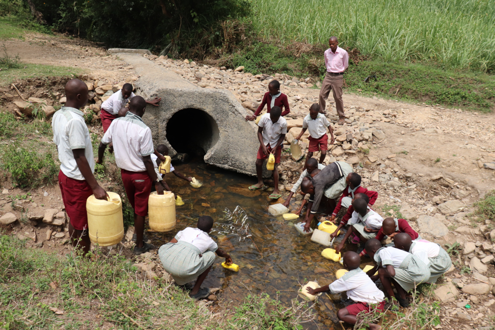 The Water Project : kenya21247-fetching-water-from-the-stream