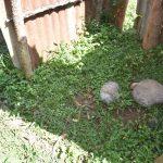 The Water Project: Emusaka Community, Manasses Spring -  Bath Shelter Floor