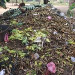 The Water Project: Kulafai Rashideen Primary School -  Garbage Pile In Community