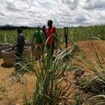 The Water Project: Rubona Kyawendera Community -  Materials For Well Construction