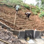 The Water Project: Mushikulu B Community, Olando Spring -  Planting Grass Above The Catchment Area