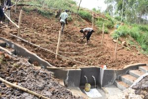 The Water Project:  Planting Grass Above The Catchment Area