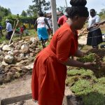 The Water Project: Isanjiro Community, Musambai Spring -  Grass Planting