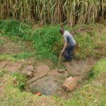 The Water Project: Mukoko Community, Zebedayo Mutsotsi Spring -  Site Clearance