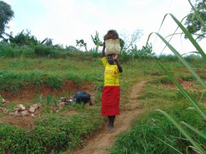 The Water Project:  Transporting Grass For Planting At The Spring
