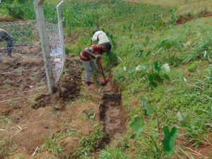 The Water Project:  Diggin The Cut Off Drainage