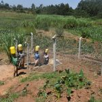 The Water Project: Shihome Community, Oloo Njinuli Spring -  Clean Water En Route To Use