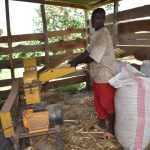 The Water Project: Emuyere Community, Kaikai Spring -  Community Member Grinding Animal Feed