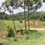 The Water Project: Emuyere Community, Kaikai Spring -  Landscape