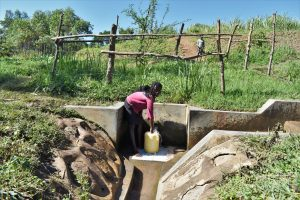 Giving Update: Chisombe Spring