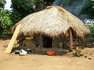 Typical home in Kisindi, Uganda